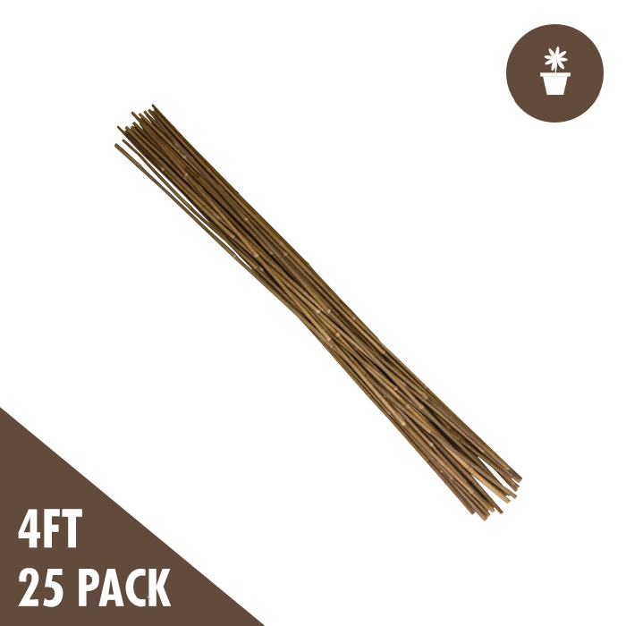 GROW1 4 Foot Natural Bamboo Stakes (PACK of 25)