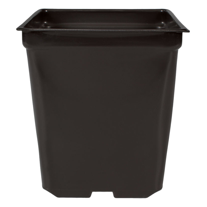 DL 5 X 5 X 4.5 Square 1.25 Quart Square Pot - 585 CASE