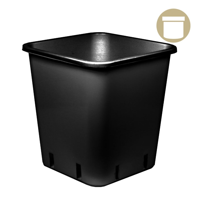 DL 1.5 Gallon Black Square Pot