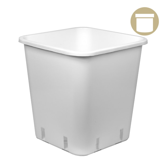 DL 3 Gallon White Square Pot